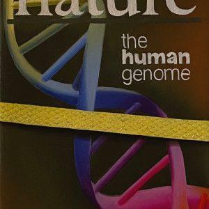 Flashback (1950-2001) 1953 pubblicazione studi DNA cm. 11,5 x 15.