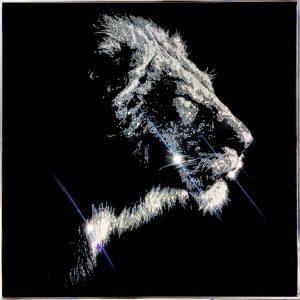Means in the wind, 10600 Crystals from Swarovski su plexiglass, 2019, 80x80 cm. cornice profilo acciaio